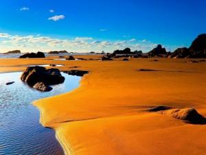Extensión de arenas doradas a orillas del mar
