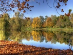 Hojas otoñales junto al lago