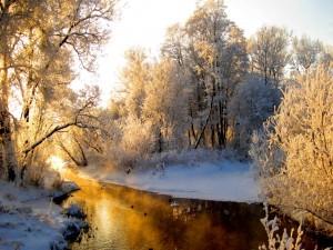 Nieve a orillas del río