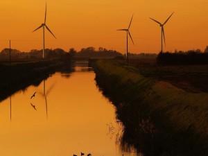 Parque eólico junto a un río