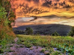 Cielo nuboso en el campo