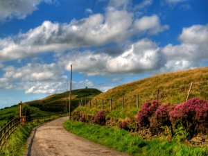 Carretera en un hermoso día de primavera