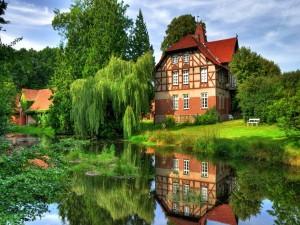 Casas rodeadas de naturaleza verde