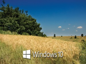 Paisaje con el logo de Windows 10