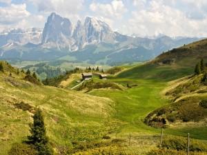 Cabañas en las montañas verdes