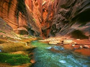 Río entre las paredes de un cañón