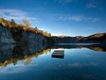 Madera flotando en el lago