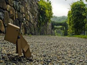 Danbo perdido en un jardín