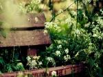Banco de madera cubierto de flores