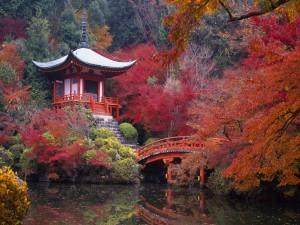 Hermoso paisaje japonés en otoño