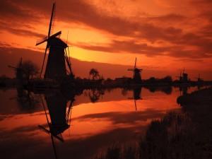 Molinos de viento vistos al amanecer