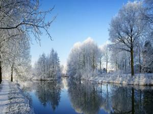 Paisaje invernal junto al agua