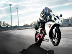 Yamaha R1 corriendo en un circuito
