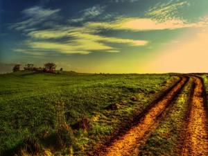 Camino de tierra en el campo