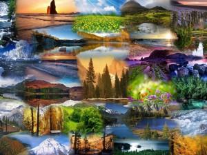 Retratos de la Naturaleza