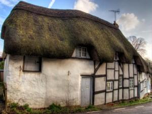 Casas con el techo cubierto de musgo