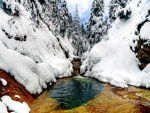 Río entre árboles y rocas nevadas