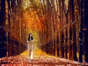 Chica caminando por un bosque otoñal