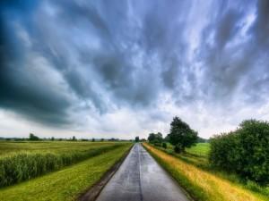 Carretera a lo largo del campo verde
