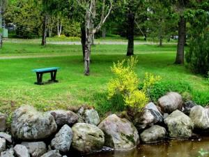 Solitario banco en el parque
