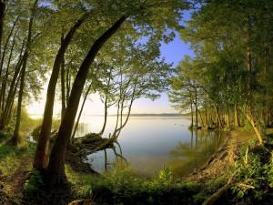 Hermoso día de verano en el lago