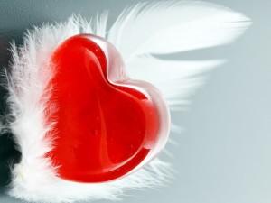 Un pedazo de mi corazón vive en el cielo