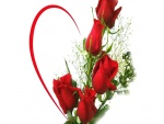 Bellas rosas de color rojo