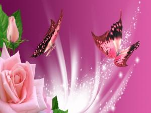 Mariposas y rosas