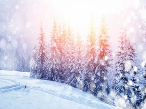 Destellos y copos de nieve