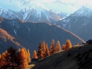 Montañas nevadas al comienzo de otoño