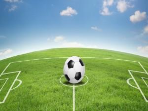 Gran campo de fútbol