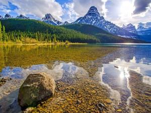 Guijarros en el lago