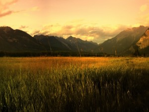 Montañas vistas desde el prado