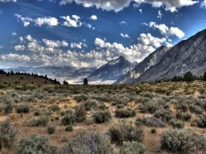 Llanura y montañas