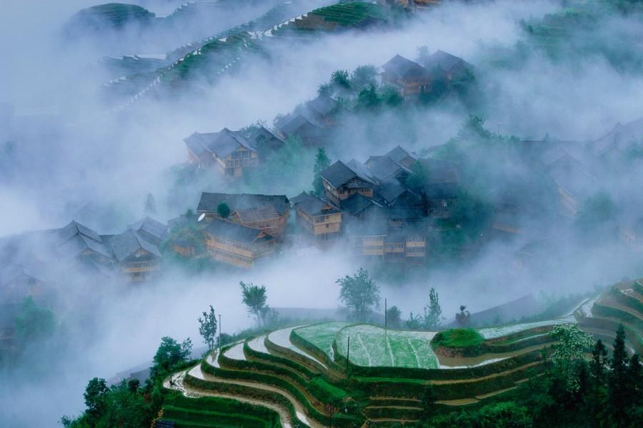 Niebla sobre unos campo de arroz en China