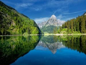 Paisaje veraniego reflejado en el lago