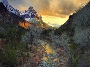 Un bonito río entre árboles y montañas