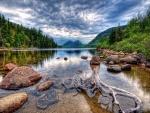 Tronco y piedras en el lago