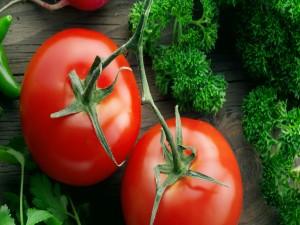 Tomates y ramitas de perejil