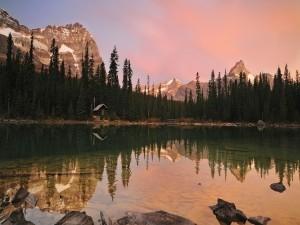 Pequeña cabaña reflejada en el lago