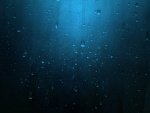 Gotas de agua en un fondo azulado