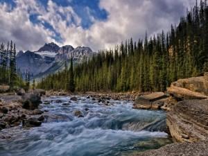 Río caudaloso bajo las montañas