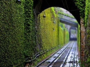 Bonito túnel ferroviario