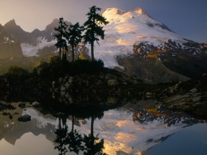 Tres árboles y una gran montaña