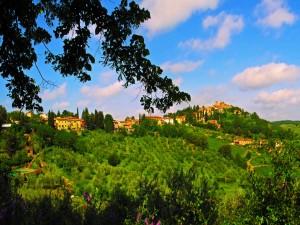 Bonito pueblo rodeado de vegetación