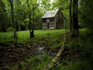 Cabaña junto al riachuelo del bosque