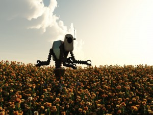 Robot en el campo