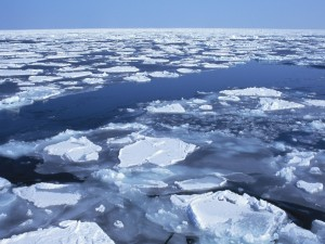 Bloques de hielo en la superficie del agua