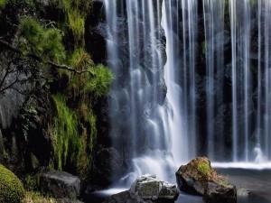 Una fina cascada