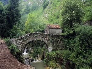 Casita junto a un puente de piedra